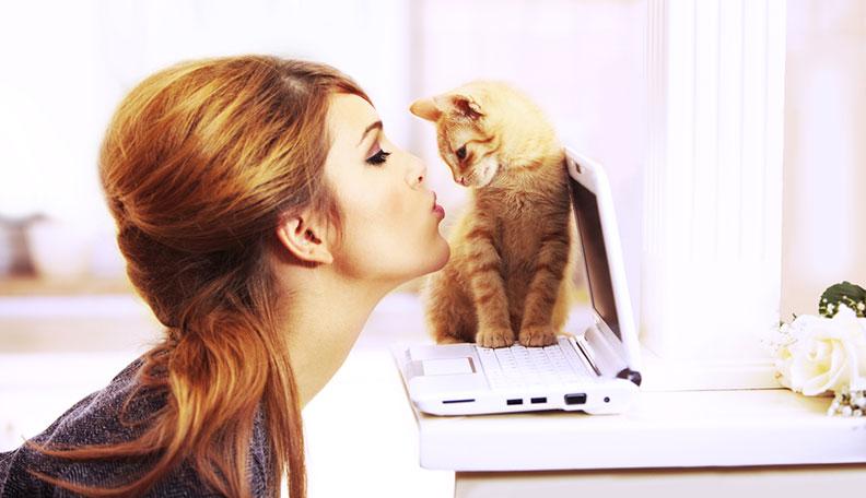 kitten on laptop woman