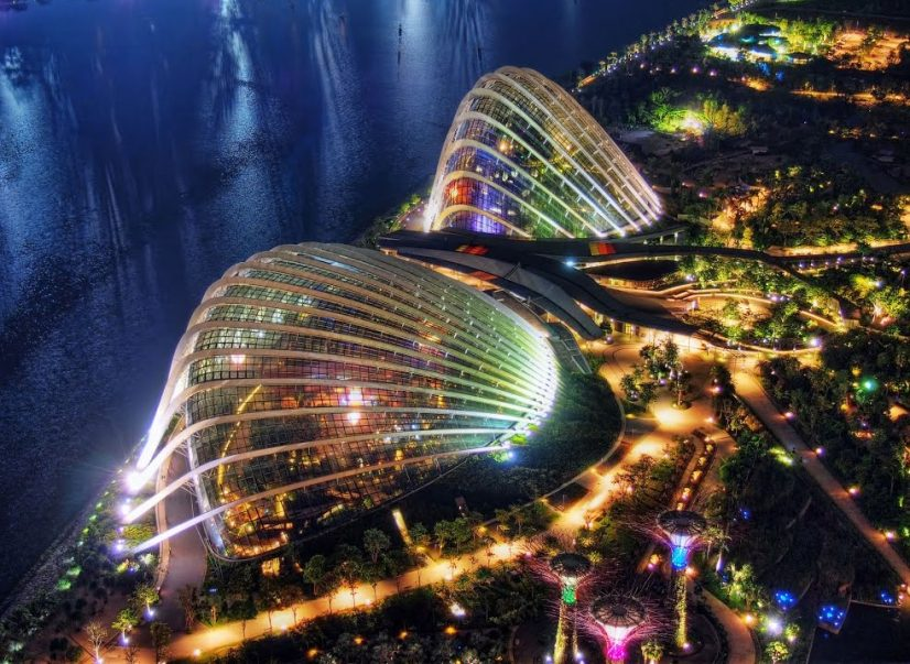 Cloud Forest Singapore Night Time