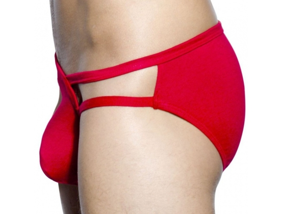 Almost Naked Fling Brief Red - L