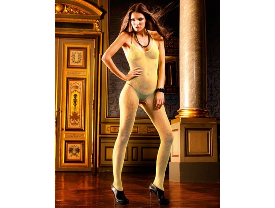 Baci Fine Net Bodystocking