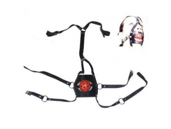 BDSM Full Head Harness With Gag Thin
