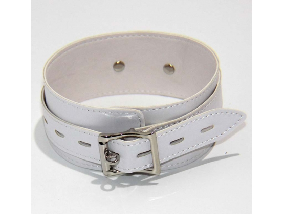 BDStyle Collar Adjustable White Light PVC