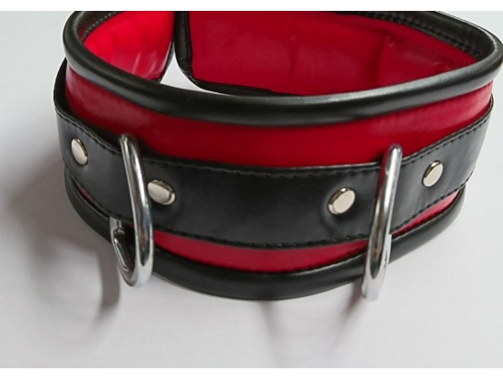 Black and Red Collar with Lead