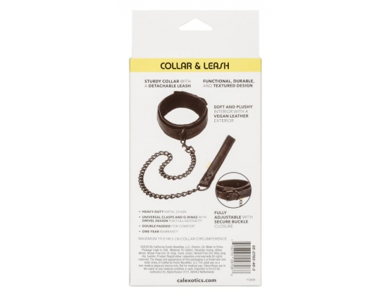 Boundless Collar and Leash