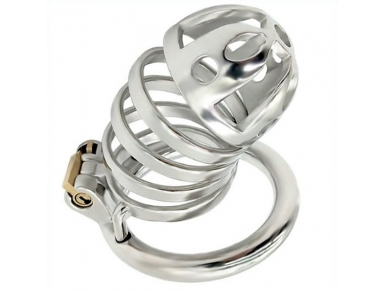 Captivated Stainless Steel Locking Chastity Cage