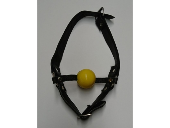 Fetish Toy Box Ball Gag with Face Harness