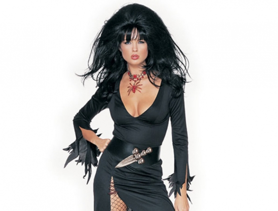 Haunted House Mistress Costume