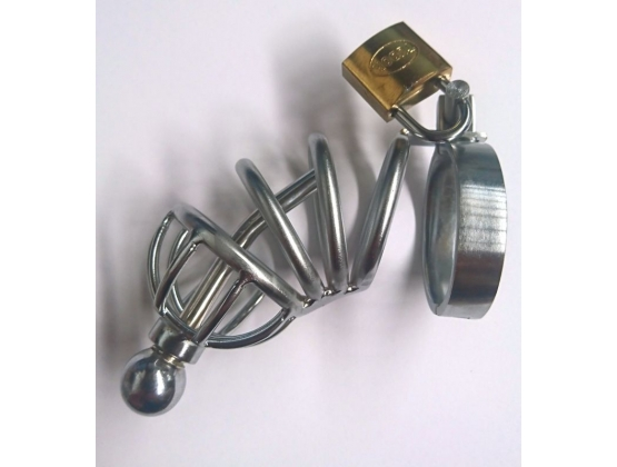 Male Asylum Cock Plug and Chastity Device