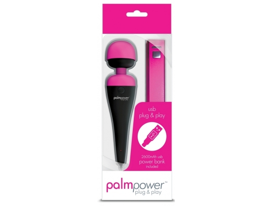 Palm Power Plug and Play with Power Bank