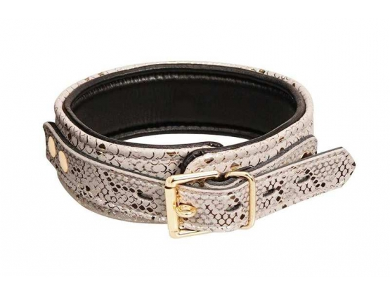 Spartacus White Snake Print Microfiber Collar and Leash
