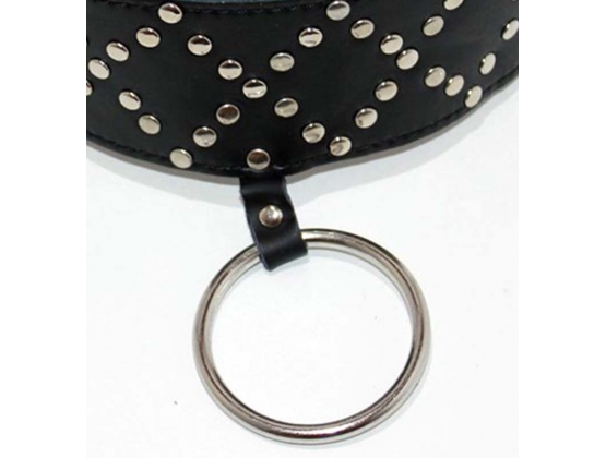 Wyred Slave Studded Posture Collar with Metal O-Ring