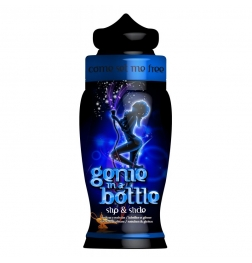 Genie In A Bottle Slip & Slide