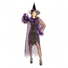 Feathered Witch Adult Costume