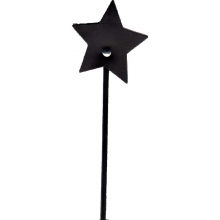 Starry Eyed Star Tipped Leather Crop